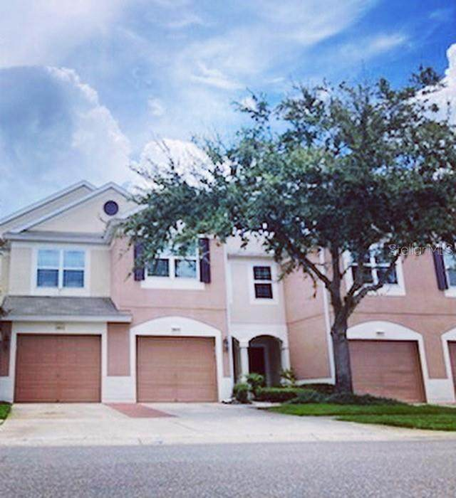 26615 Castleview Way, Wesley Chapel, FL 33544 (MLS #T3318636) :: Zarghami Group