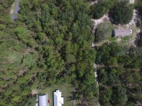 Weeki Wachee, FL 34614 :: Florida Real Estate Sellers at Keller Williams Realty