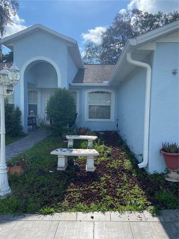 12723 N Ola Avenue N, Tampa, FL 33612 (MLS #T3319707) :: Zarghami Group