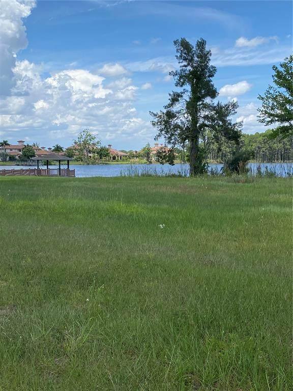 17117 Breeders Cup Drive, Odessa, FL 33556 (MLS #T3319966) :: Bridge Realty Group