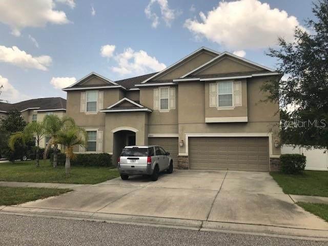 10820 Carloway Hills Drive, Wimauma, FL 33598 (MLS #T3320227) :: Zarghami Group