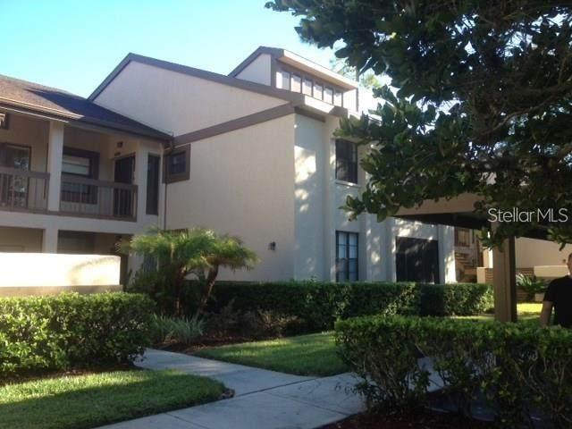 120 Lindsay Lane, Oldsmar, FL 34677 (MLS #T3320659) :: Pristine Properties