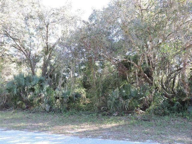 16269 Limerick Avenue, Port Charlotte, FL 33954 (MLS #T3320748) :: Rabell Realty Group