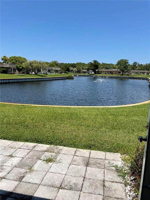 4312 Summersun Drive, New Port Richey, FL 34652 (MLS #T3321153) :: Stellar Home Sales