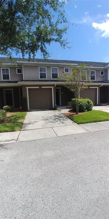 8007 Bally Money Road, Tampa, FL 33610 (MLS #T3321520) :: RE/MAX Local Expert