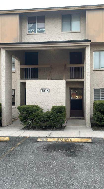 7518 Needle Leaf Place #36, Tampa, FL 33617 (MLS #T3321697) :: Realty Executives