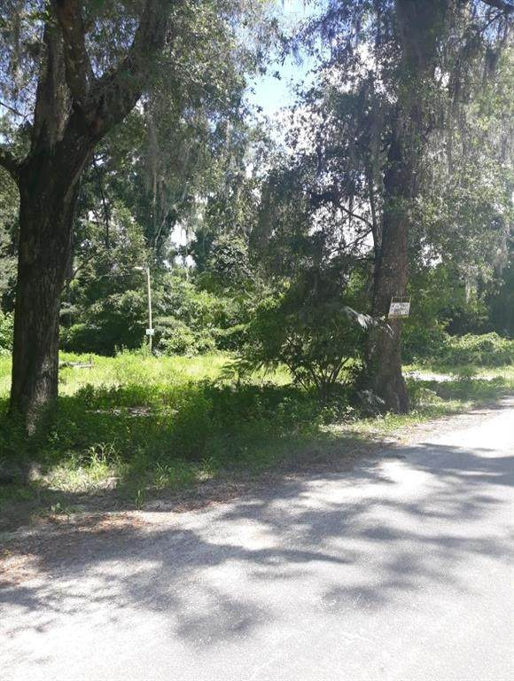 17299 NE 16TH Terrace, Citra, FL 32113 (MLS #T3321763) :: Global Properties Realty & Investments