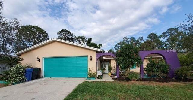 3910 Briarlake Drive, Valrico, FL 33596 (MLS #T3321984) :: Godwin Realty Group