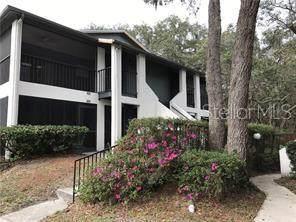 14739 Norwood Oaks Drive #101, Tampa, FL 33613 (MLS #T3322035) :: The Duncan Duo Team