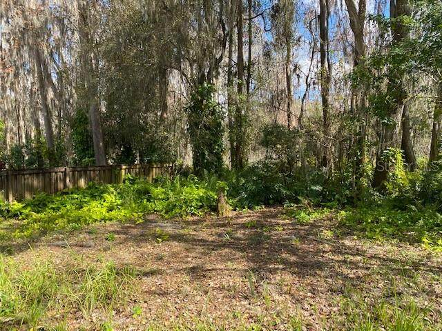 16407 Lake Byrd Drive, Tampa, FL 33618 (MLS #T3322102) :: Young Real Estate