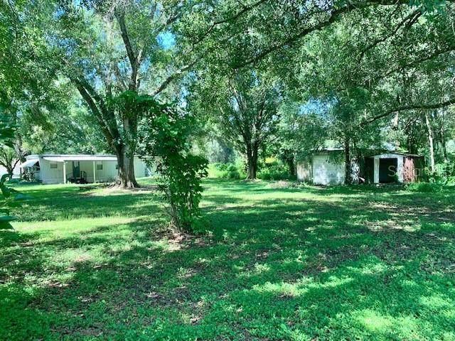 15402 Pennington Road, Tampa, FL 33624 (MLS #T3322918) :: Zarghami Group