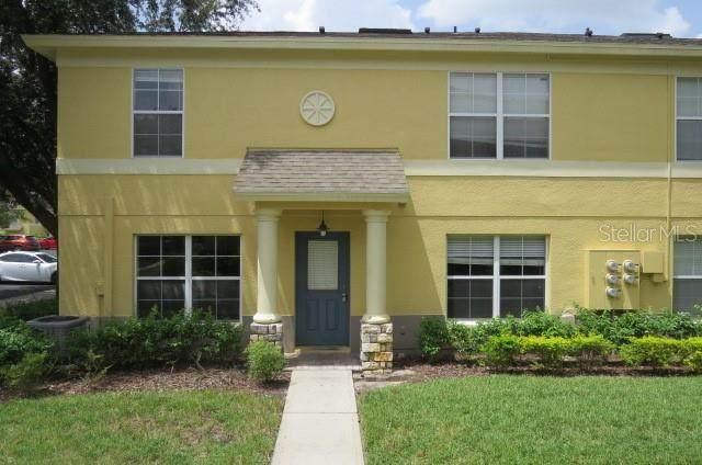 3418 Castle Stone Court, Valrico, FL 33594 (MLS #T3327132) :: Everlane Realty