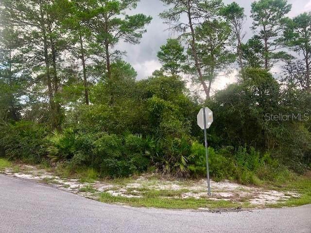 Tinley Road, New Port Richey, FL 34654 (MLS #T3327198) :: Vacasa Real Estate