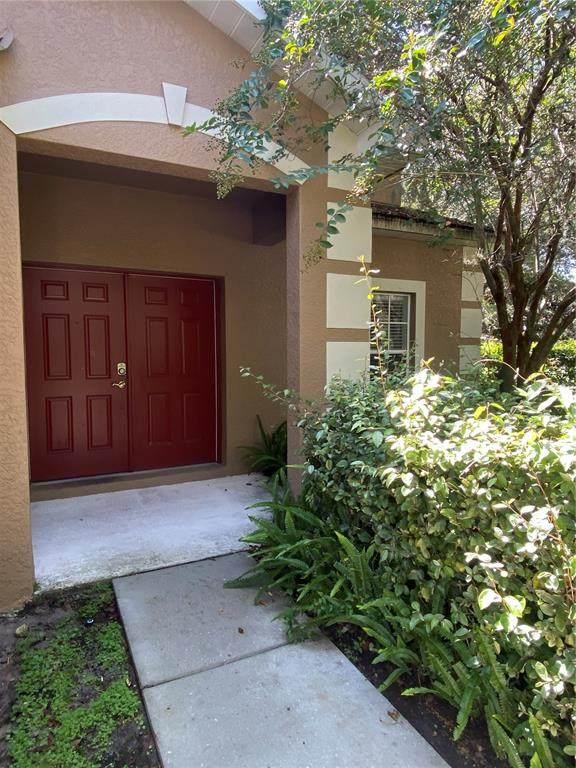 11266 Creek Haven Drive, Riverview, FL 33569 (MLS #T3327848) :: Zarghami Group