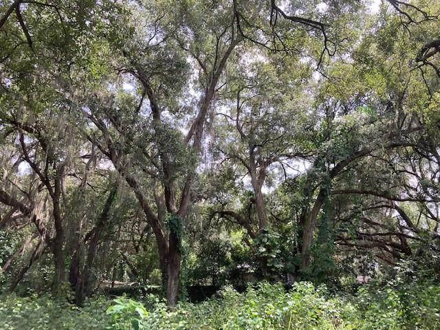Claypit Road, Seffner, FL 33584 (MLS #T3330240) :: Lockhart & Walseth Team, Realtors