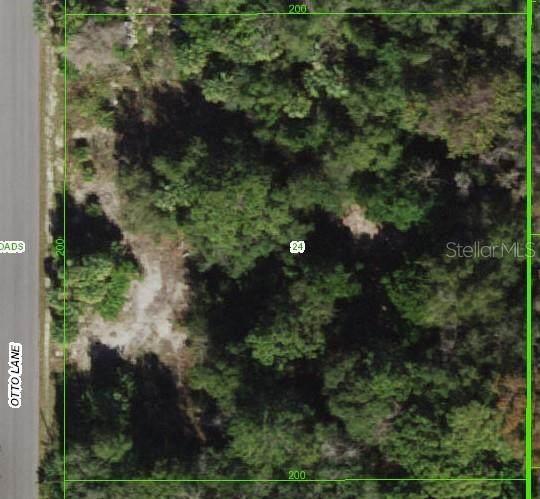 Otto Lane, Hudson, FL 34667 (MLS #T3330714) :: Sarasota Gulf Coast Realtors
