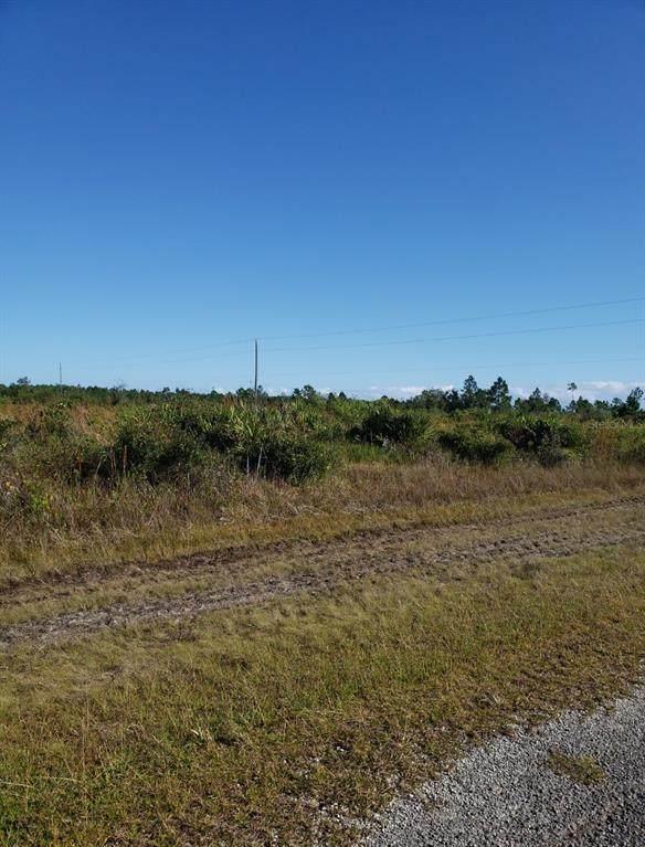 317 Calendula Drive, Indian Lake Estates, FL 33855 (MLS #T3331756) :: GO Realty