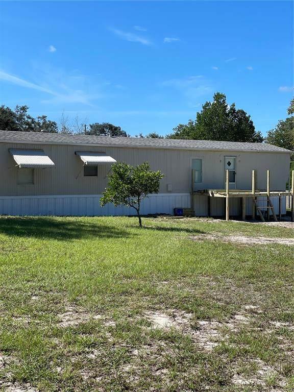 18230 Oxenham Avenue, Spring Hill, FL 34610 (MLS #T3331790) :: Vacasa Real Estate