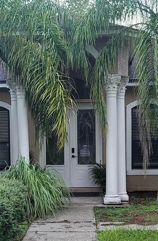 9241 Yellow Lake Drive, New Port Richey, FL 34654 (MLS #T3331805) :: Armel Real Estate