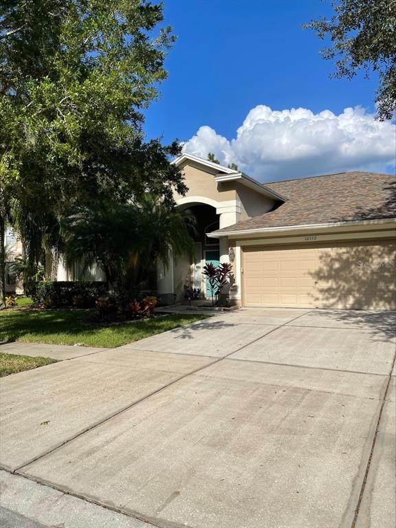 10532 Plantation Bay Drive, Tampa, FL 33647 (MLS #T3331823) :: Zarghami Group