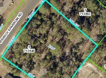 Ipswich Sparrow Road, Weeki Wachee, FL 34614 (MLS #T3332064) :: Vacasa Real Estate