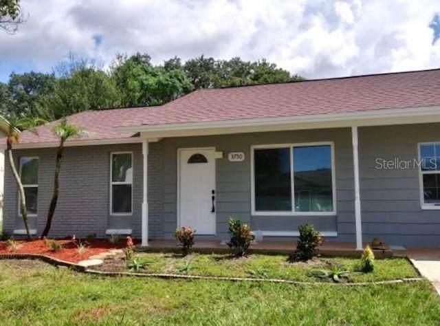 3750 Mendocino Street, New Port Richey, FL 34655 (MLS #T3332085) :: Zarghami Group