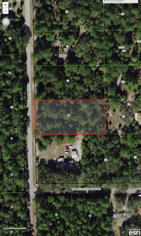 9121 N Peachbud Point, Crystal River, FL 34428 (MLS #T3332291) :: The Truluck TEAM