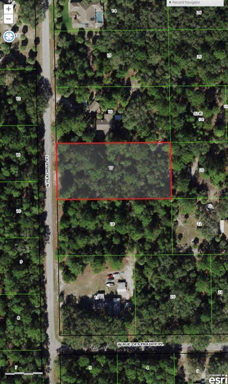 9153 N Peachbud Point, Crystal River, FL 34428 (MLS #T3332294) :: The Truluck TEAM
