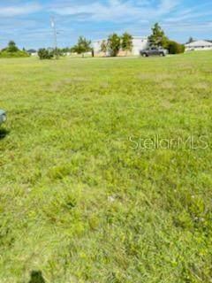 1105 NE 8TH Street, Cape Coral, FL 33909 (MLS #T3332297) :: Zarghami Group