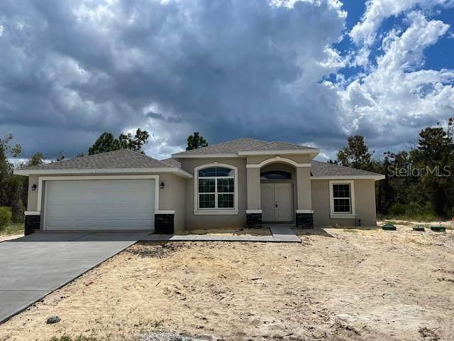 13088 Meinert Avenue, Brooksville, FL 34613 (MLS #T3332301) :: Vacasa Real Estate