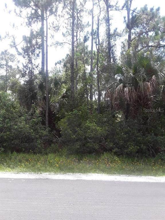 3218 Slama Avenue SE, Palm Bay, FL 32909 (MLS #T3334428) :: Everlane Realty