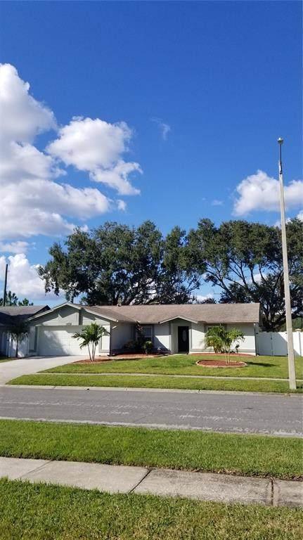 4403 Birchwood Court S, Tampa, FL 33624 (MLS #T3334700) :: Everlane Realty