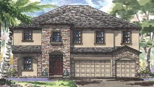21812 Emory Oak Place, Land O Lakes, FL 34637 (MLS #T3334718) :: Cartwright Realty