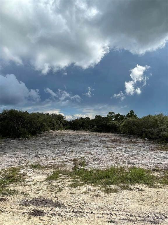 Grindstone Drive, Webster, FL 33597 (MLS #T3334816) :: Delgado Home Team at Keller Williams