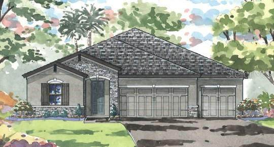 9119 Isabella Circle, Parrish, FL 34219 (MLS #T3335236) :: Keller Williams Suncoast