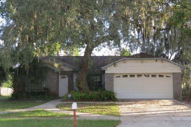 12123 Fruitwood Drive, Riverview, FL 33569 (MLS #T3335577) :: The Duncan Duo Team