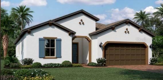 2720 Pine Sap Lane, Saint Cloud, FL 34771 (MLS #T3335717) :: American Premier Realty LLC