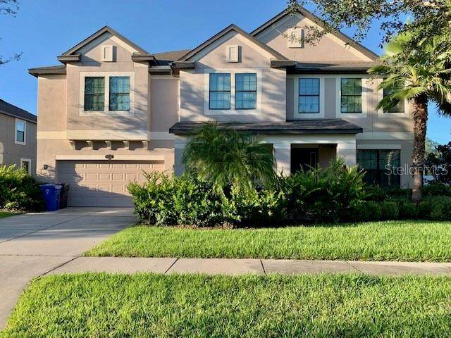 11812 Harpswell Drive, Riverview, FL 33579 (MLS #T3335923) :: EXIT King Realty