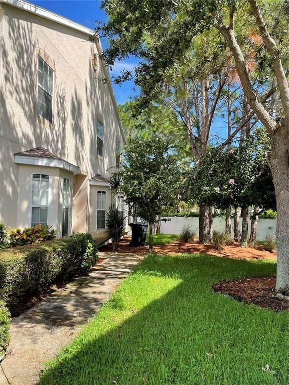 723 Vallance Way NE, St Petersburg, FL 33716 (MLS #T3336000) :: Carmena and Associates Realty Group