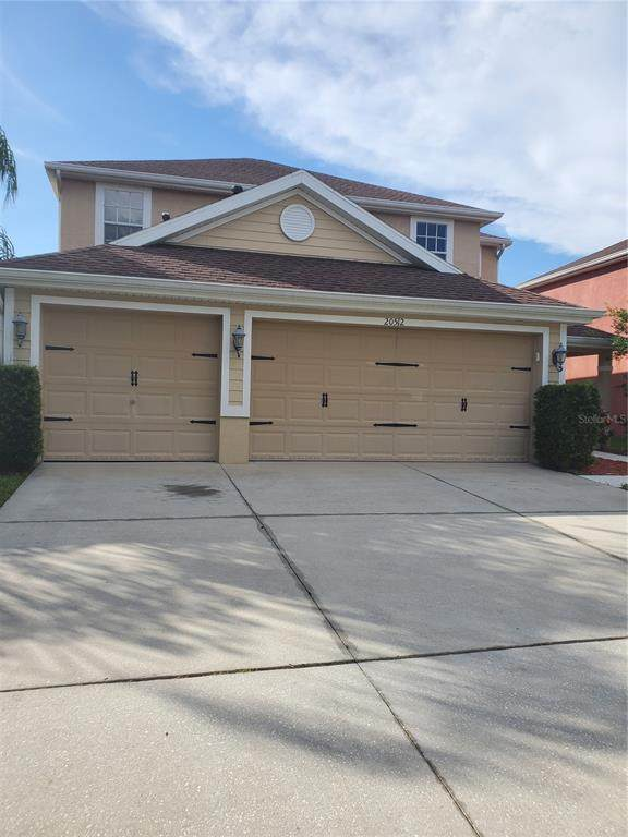 20512 Sultana Court, Tampa, FL 33647 (MLS #T3336063) :: Cartwright Realty