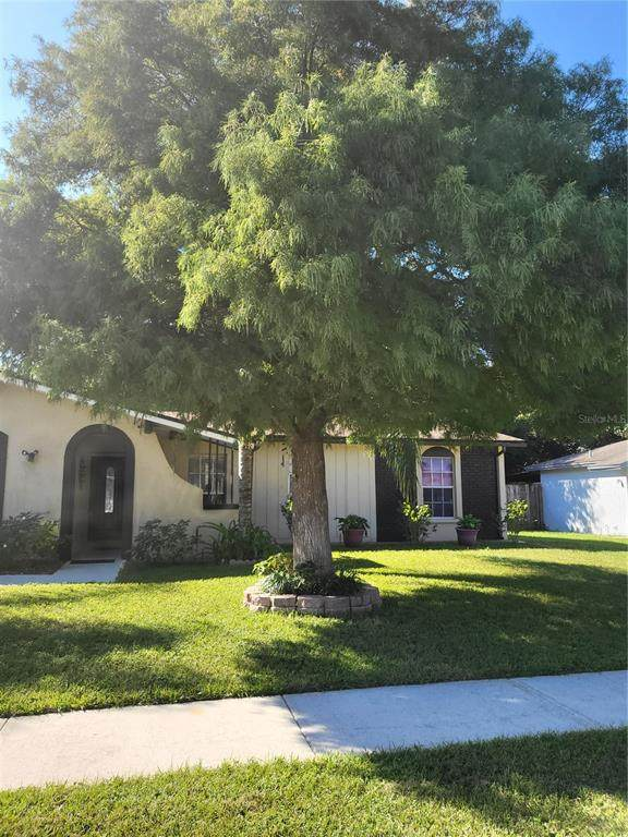 2209 Valleybrook Avenue, Valrico, FL 33594 (MLS #T3336097) :: CARE - Calhoun & Associates Real Estate