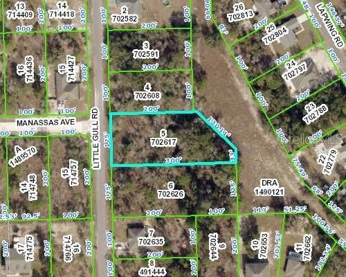 11244 Little Gull Road, Weeki Wachee, FL 34614 (MLS #T3336161) :: Vacasa Real Estate