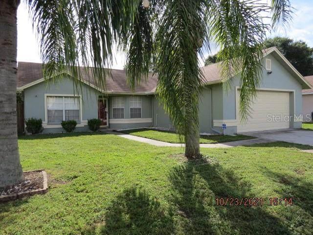 11618 Wellman Drive, Riverview, FL 33578 (MLS #T3337084) :: MavRealty