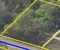 . Jaybird Road, Weeki Wachee, FL 34614 (MLS #T3337132) :: Stellar Home Sales
