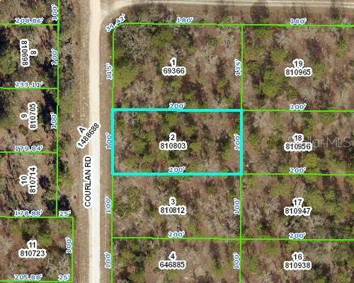 Courlan Road, Weeki Wachee, FL 34614 (MLS #T3337181) :: Everlane Realty
