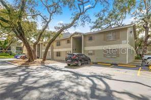 14468 Reuter Strasse Circle #507, Tampa, FL 33613 (MLS #T3337573) :: Future Home Realty