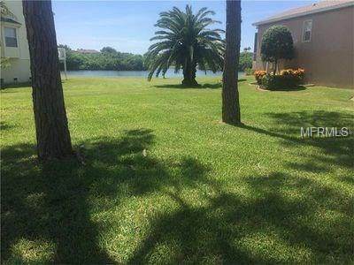 Pelican Court, Tarpon Springs, FL 34689 (MLS #U7840469) :: Griffin Group