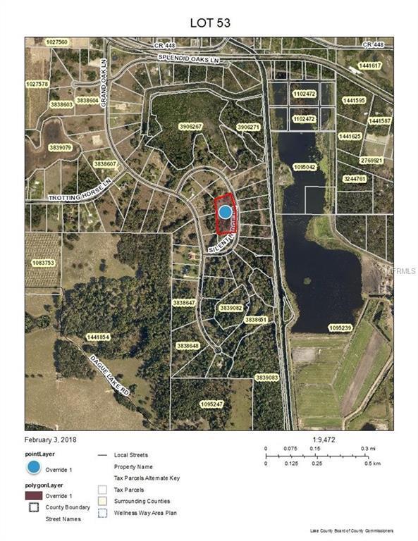 TBD Silent Ridge Drive #53, Tavares, FL 32778 (MLS #U7846980) :: Homepride Realty Services