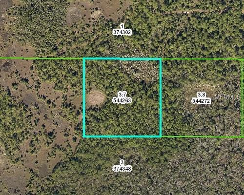 Shoal Line Boulevard, Spring Hill, FL 34607 (MLS #U7851743) :: RE/MAX Realtec Group