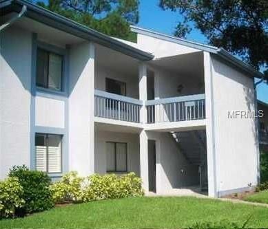 212 Martha Lane #212, Oldsmar, FL 34677 (MLS #U7854637) :: The Duncan Duo Team